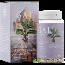 GAL Sensoril Ashwagandha 60db